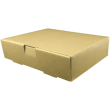 جعبه غذا تک پرس بیرون بر